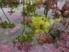 Riv_5_couleur__19_01